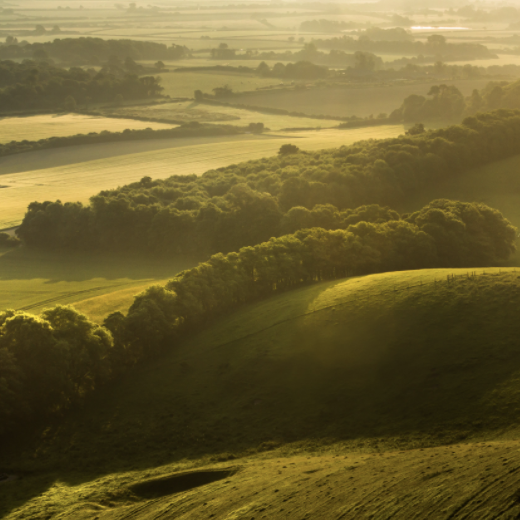 Photography in the South Downs National Park